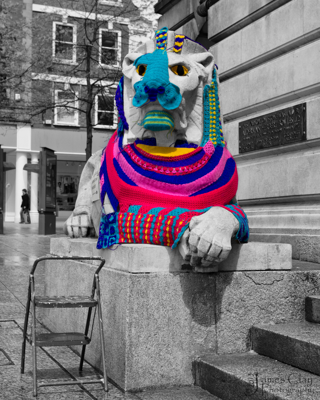 "Nikki Charlesworth ""Yarn Bombs"" Left Lion"
