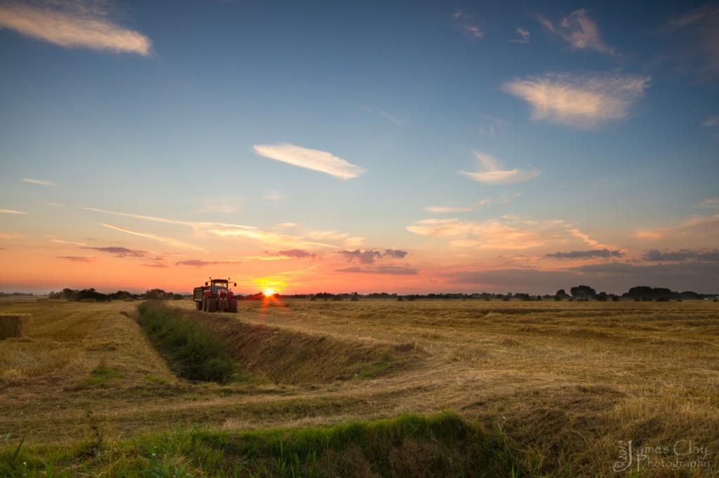 Harvesting the Evening Lig
